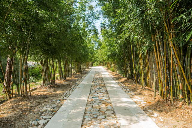 Kinmen Botanical Garden and Veteran Story House